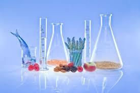 FSN381 Chemistry of Food Components Laboratory